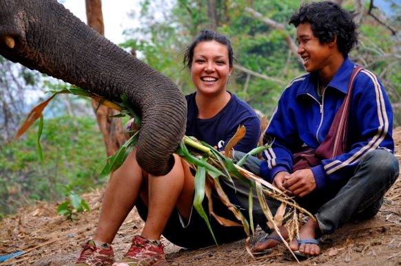 Volunteering with Elephants in Thailand Featured Image