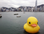 Giant rubber duck makes waves in Hong Kong Featured Image