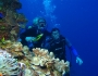Scuba Diving: A Guide by Warrick Howard Featured Image