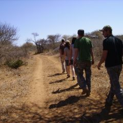 Tracking in bush