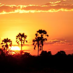 Sunset on the outskirts of Maun, Botswana.