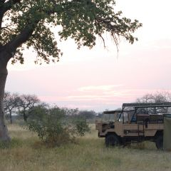 Camping out on safari through Chobe National Park.