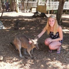 Hang around with Kangaroo's like Leah during your time off