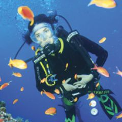 Learn to Dive - Dahab