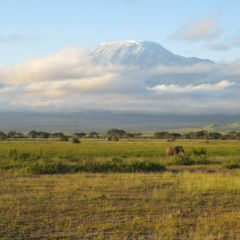 Gallery-kili-01