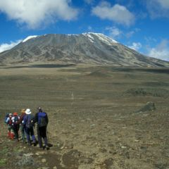 Gallery-kili-10