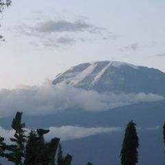 Gallery-kili-15