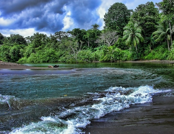 Walk on the Wild Side in Costa Rica Featured Image
