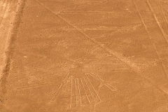 Sandstorm reveals unseen Nazca Lines Featured Image
