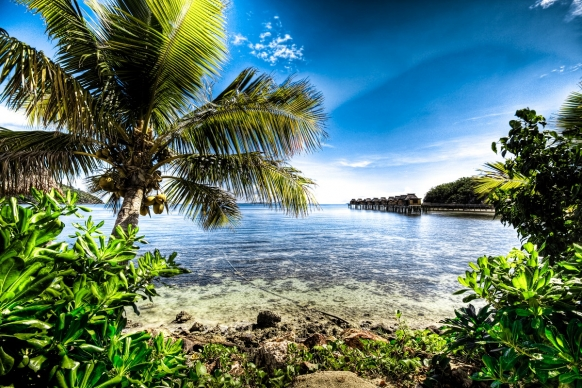 Top 7 Unmissable Things To Do in Fiji Featured Image