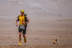 Man adopts stray puppy that ran ultra-marathon with him in the Gobi Desert Featured Image