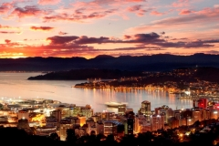 Top 10 Things To Do in Wellington, NZ Featured Image