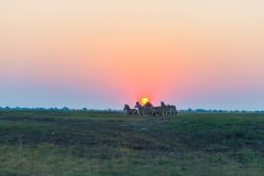 Why a Trip to Africa is a Total Life-Changer Featured Image