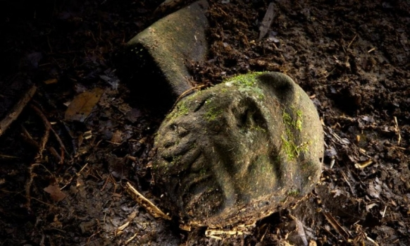 Lost cities discovered in Honduras jungle Featured Image
