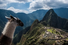 Complete Health Advice for Peru Featured Image