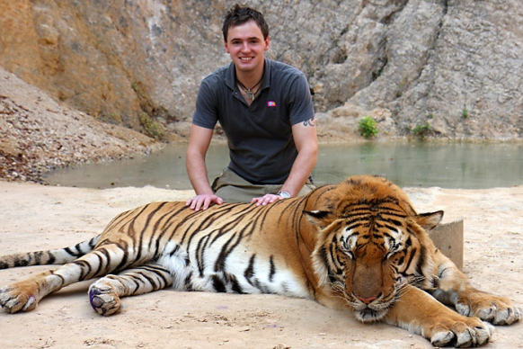 Tigers removed from the infamous 'Tiger Temple' in ...