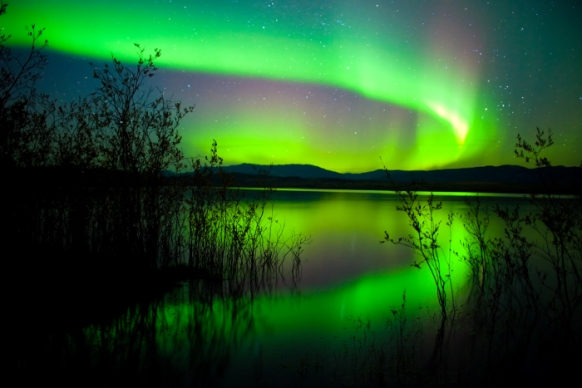 Northern Lights brighten up North America Featured Image