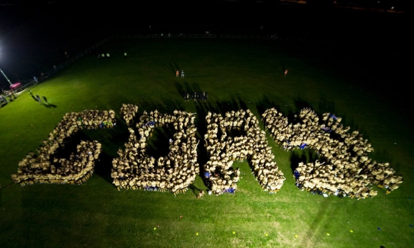 Aussies smash world record Featured Image