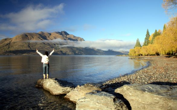 Explore the Natural Beauty of New Zealand