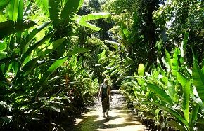 Expeditions in Costa Rica