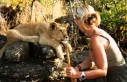 Lion Rehabilition Project