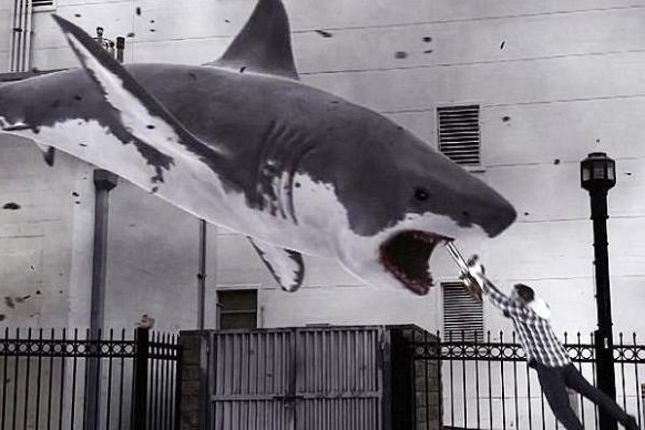 Sharknado 2 gets the go-ahead Featured Image