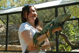 Reptile handling course