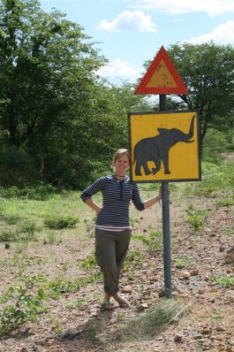 Watch out for elephants!