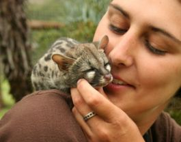 Care for Wildlife in an Animal Sanctuary in Port Elizabeth