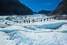 Fox glacier hike bloggers tour