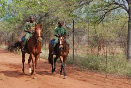 Mounted poaching patrols