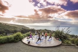 Stray New Zealand - Raglan Yoga at Inspiration Point