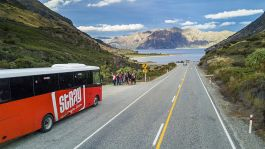 Stray New Zealand - Bus in the South Island