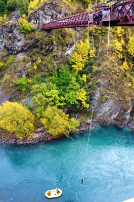 New Zealand bungee