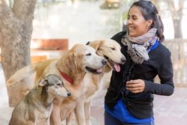 Canine Therapy in Argentina