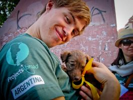 Animal Sanctuary in Argentina
