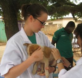 Veterinary Medicine in Ghana