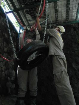 Volunteers setting up ladders and tires for the orangutans to use