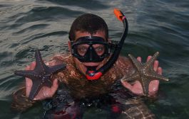 Ua volunteer with sea stars