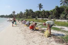 Pez Maya beach clean up operation