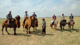 Camel and horse riding trip in 2011