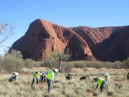 Volunteering by Uluru in Northern Territory