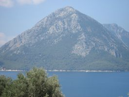 Kalamos island forest photographed from the Mainland area of Akarnania