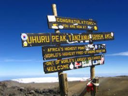 Sign at Top of Mt Kilimanjaro