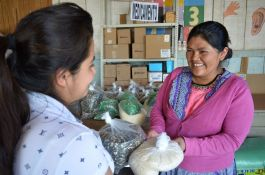 Work with fully-vetted organisations across Guatemala